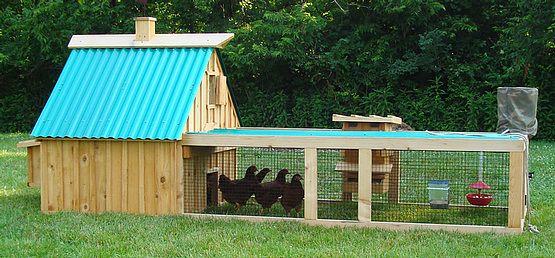 The City Chicken- Hen Houses of The Month!: Building, Diy Chicken Coops, Chicken Coop Designs, Animals Chicken S Coops Runs, Inspiring Designs, Chicken House, Aunt Debbie, Coops Designs, Gardens Grow