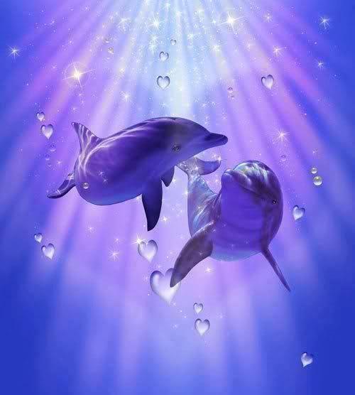 Purple+dolphins= Heart