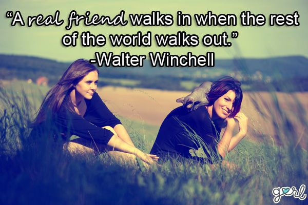 The beautiful and best friend funny quotes are the most amazing collection of , best friendship quotes, friendship day quotes, friendship quotes, quotes about friendship, quotes on friendship, cute best friends quotes images