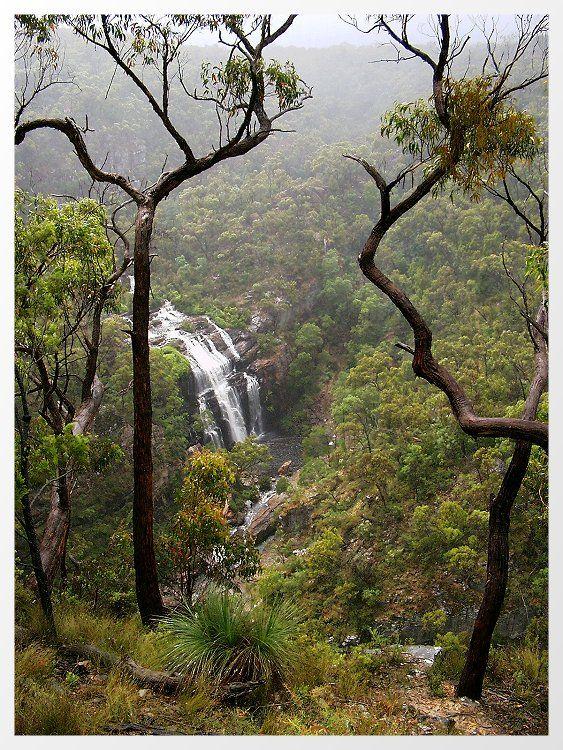 Misty gorge - Halls Gap, Victoria