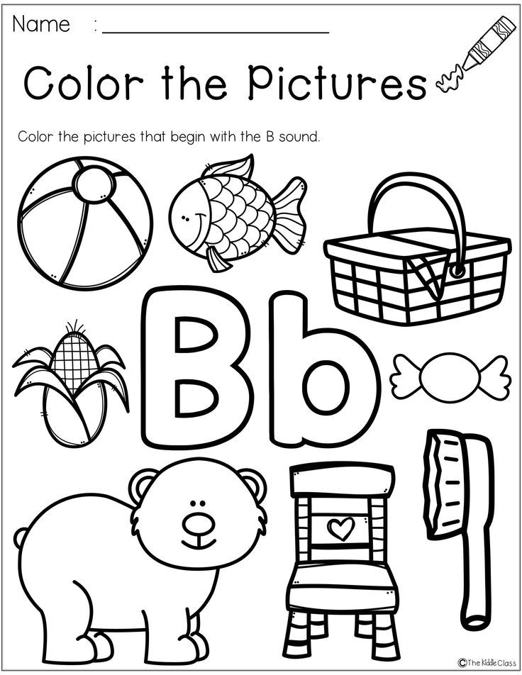 18075 best Kindergarten Freebies images on Pinterest