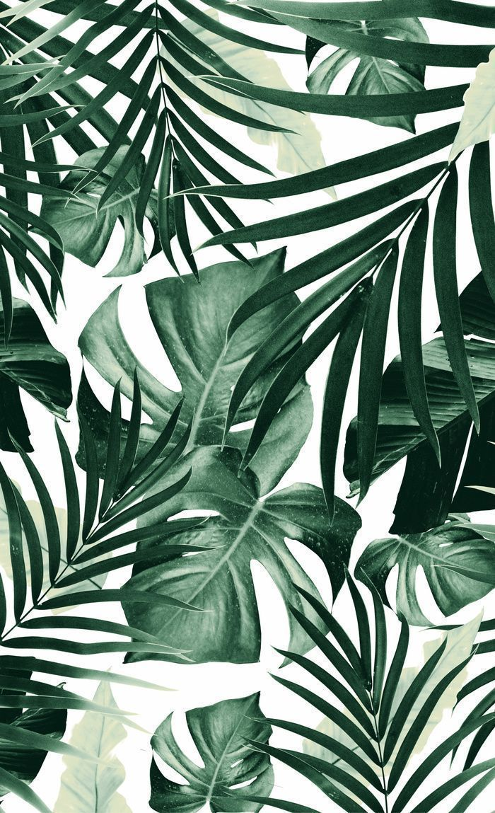 Tropical Jungle Leaves Pattern 4 tropical decor art