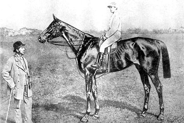 Az 1870-es években játszódó színdarabnak a világhírű és azóta is utolérhetetlen versenyló, aki 54 futamban indult és mindegyikben győztes lett, csak az egyik, majdnem mellékes szereplője. Jóval inkább az őt körülvevő, szorosan hozzá tartozó emberekről szól.