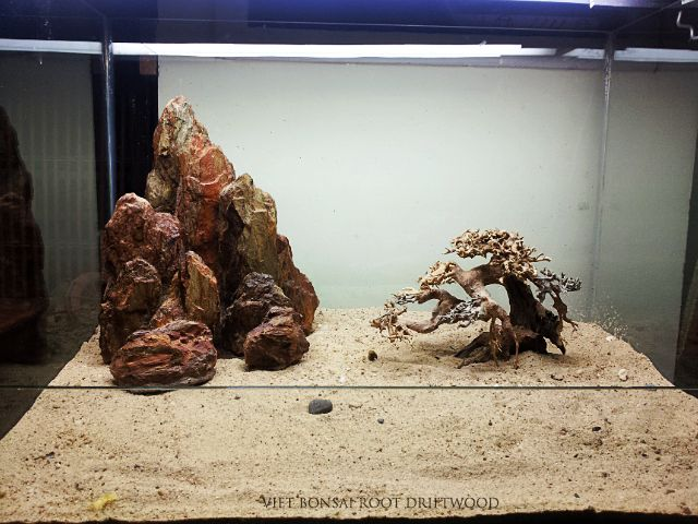 17 best images about aquarium bonsai driftwood tree on for Fish tank driftwood