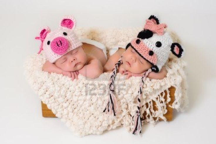 Sleeping fraternal twin newborn baby girls wearing crocheted pig and cow hats   Stock Photo