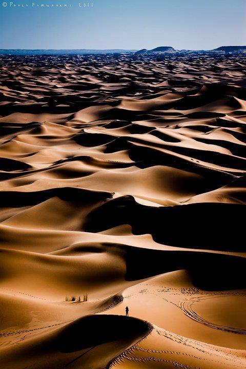 Vastness of the desert