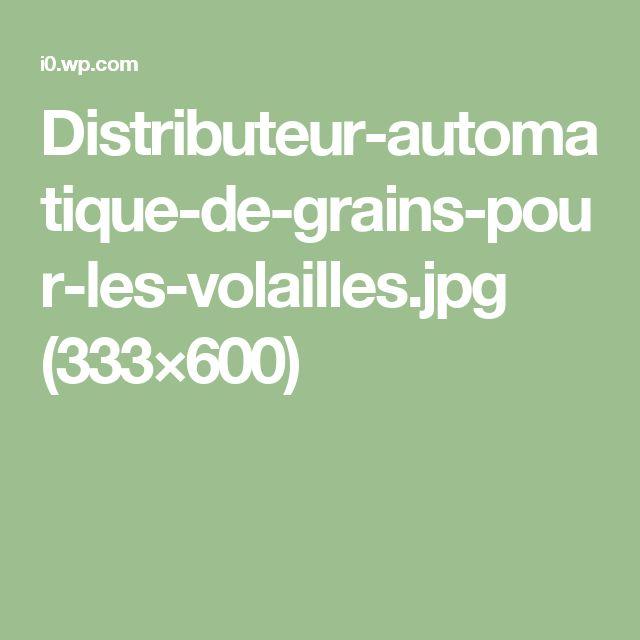 Distributeur-automatique-de-grains-pour-les-volailles.jpg (333×600)