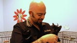 The feline version of the Dog Whisperer.  Jackson Galaxy is not only great with cats, but he's one of the coolest looking guys with an awesome name!