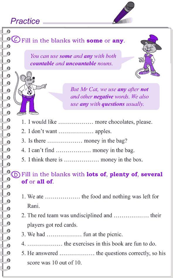 Grade 4 Grammar Lesson 14 Determiners 3