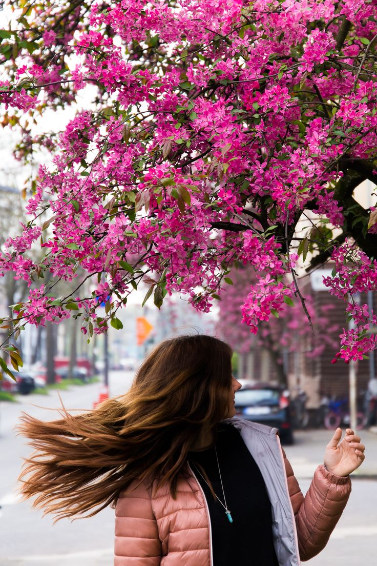 Kirschblüten / Frühling / OOTD / Casual / Long Hair / Brunette / Extensions  / New Look / Köln / Streetstyle