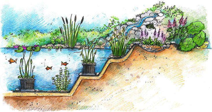 Oczko wodne w ogrodzie - przeczytaj nasz artykuł na ten temat.