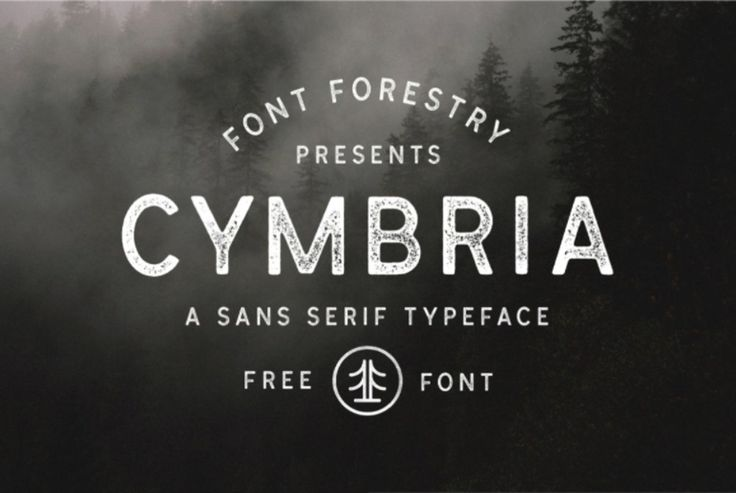 Here we've put together a list of the best free fonts of 2017, so far. We're almost half way through this trip around the sun and there has been no shortage of excellent free fonts – Vintage sans-serifs, Flowing scripts, Layered Type Systems and everything in between. This is all on top of the...