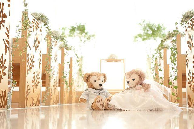 #weddingtbt . ウェルカムドールちゃんは 定番だけど#ダフメイ ちゃん(・㉨・) お洋服はママに作ってもらったもの♡ 買うと高いから無理にお願いしました ほんとに感謝感謝.˚‧º·(ฅдฅ。)‧º·˚. * . 私のドレスと旦那さんのタキシードが モチーフになってて ぬいぐるみとおそろいドレス♡♡ こういうの出来るのは 手作りならではだと思う(灬ºωº灬)♩ . *⑅︎୨୧┈︎┈︎┈︎┈︎┈︎┈︎┈┈︎┈︎┈︎┈︎┈︎୨୧⑅︎* . #wedding#welcomedoll#Disney#Duffy #ShellieMay#ribbon#weddingdress#Alice #結婚式#ウェルカムドール#手作り #ダッフィー#お揃い#シェリーメイ #ディズニー#アリス テーマは#不思議の国のアリス