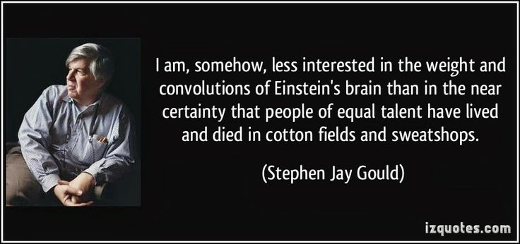 Stephen Jay Gould, best selling author, paleontologist, contributor to evolutionary theory and the philosophy and history of science.
