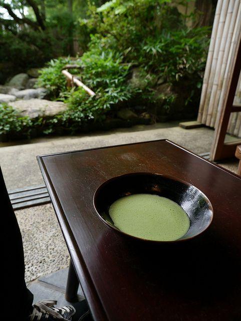 茶 Japanese green tea