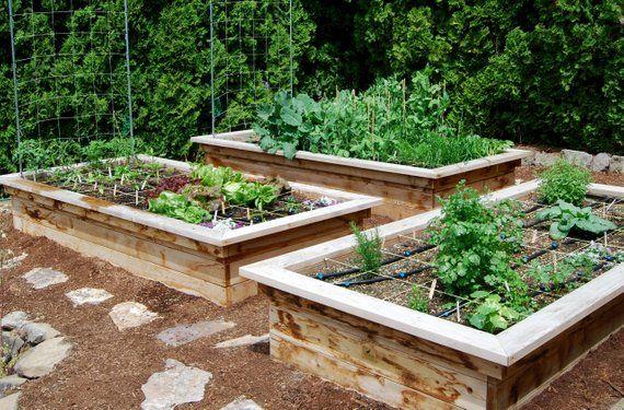 Plan For A Raised Bed Frame With Seats Etsy Building A Raised Garden Vegetable Garden Design Garden Design