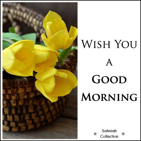Salmiah Collection: Good Morning Wish 23: Wish you a good morning