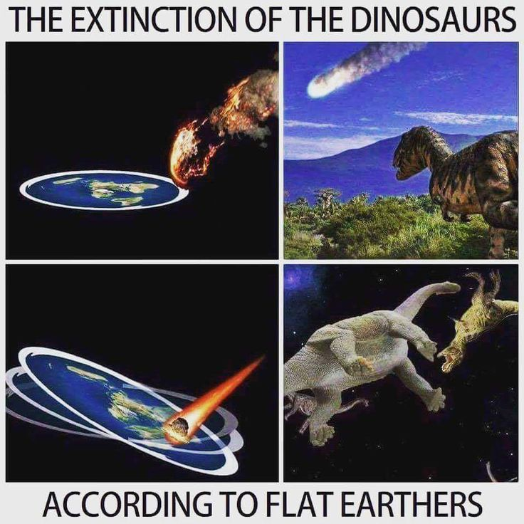 [/r/dank_meme] They knew it all the time