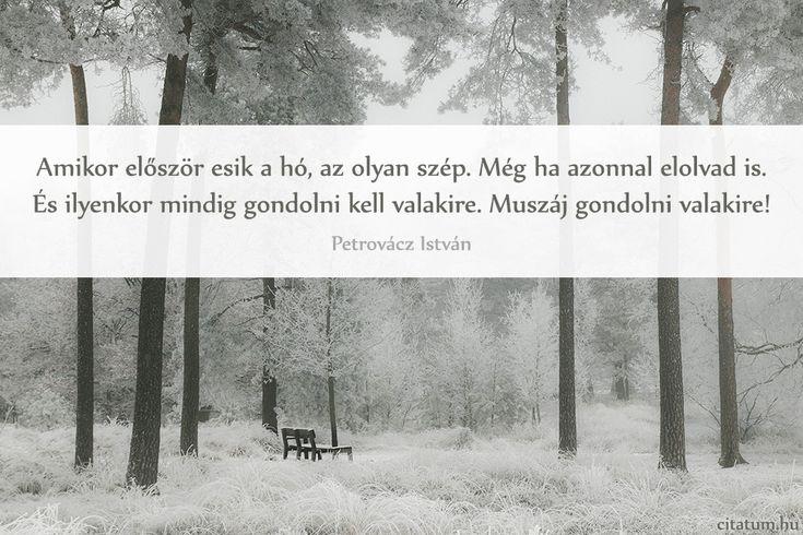 Petrovácz István #idézet az első hóról