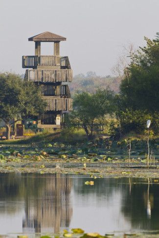 78 best images about places for scouts to go in and around for Places to go fishing in houston