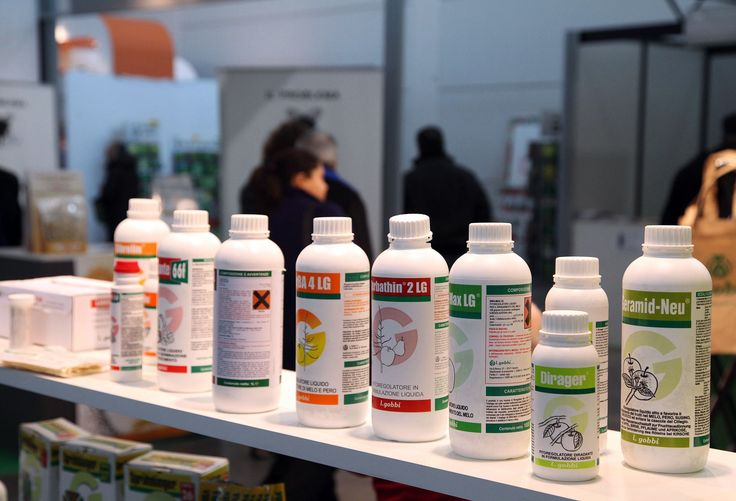 Agro-pharmaceuticals, fertilizers and seeds at Fieragricola 2012