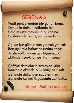 Serenad Şiiri