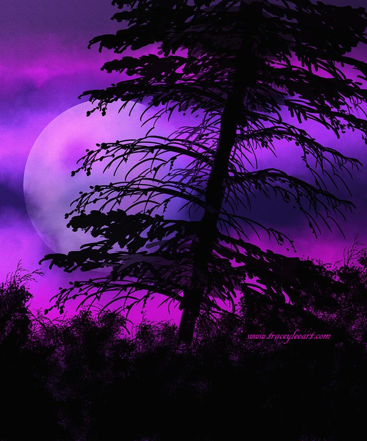 Mystic Night created in Photoshop by Tracey Everington of Tracey Lee Art Designs