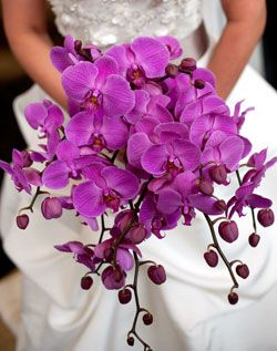 Wedding Channel Galleries:                                                    Purple Orchid Bridal Bouquet.                     Amazing in any color.