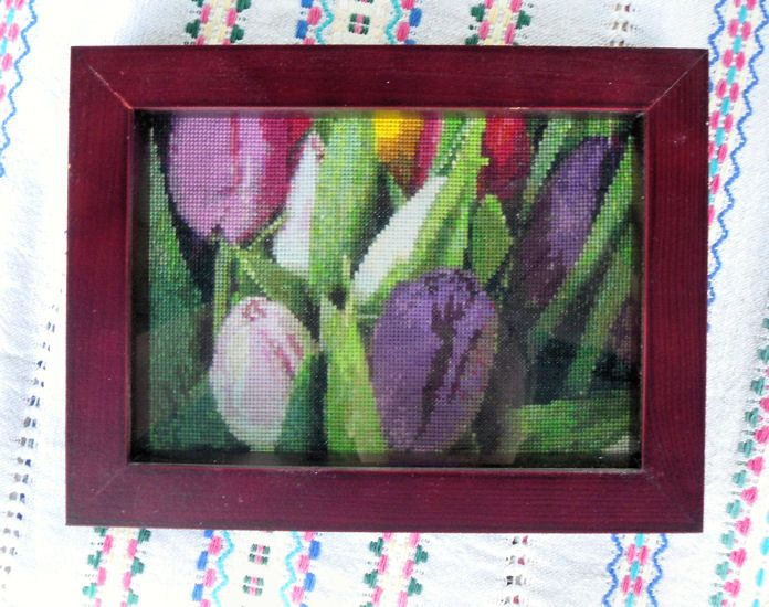 Tulips 3, year 2007