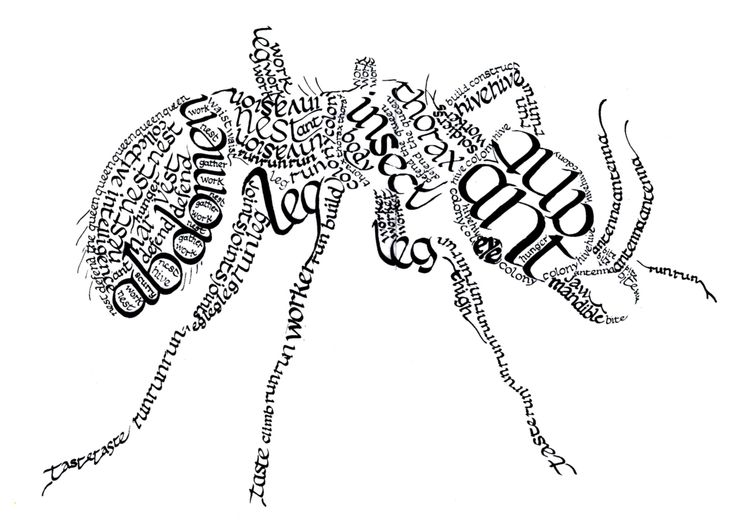 Not is it only writing practice, its art & learning about the ant... or whatever animal you choose.