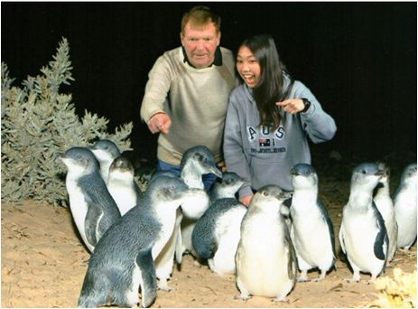Meeting the famous fairy penguins at Port Phillip Bay in Victoria, Australia with my host family. #friends #studentexchange #exchangestudent #picoftheday #fun #travel #experienceiseverything #adventure