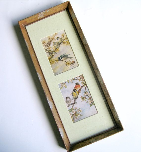 Framed Bird Prints Double Matted Framed Bird by flabbyrabbit
