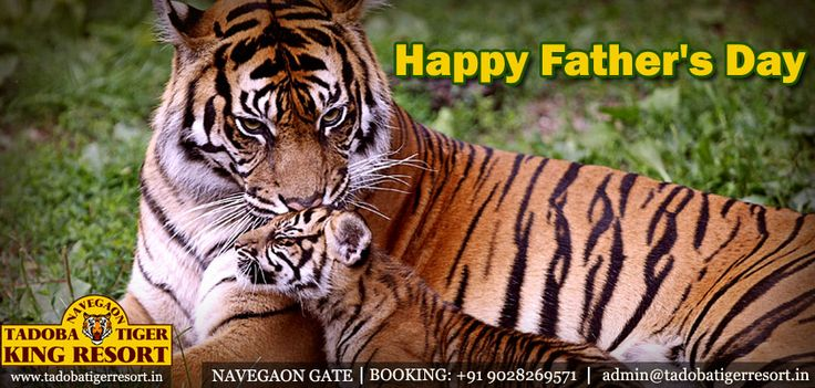 Happy Father's Day http://goo.gl/eFIi3Z