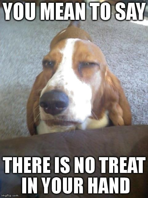 No treat ?