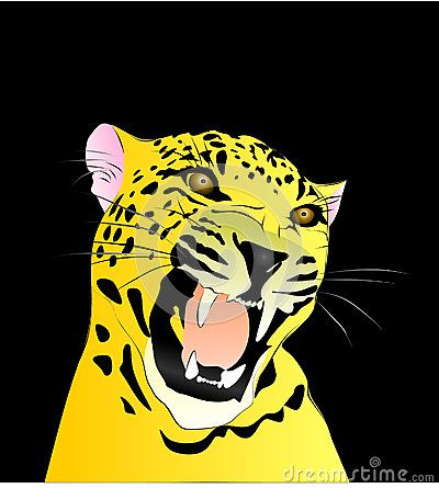 Colored vector drawing of a leopard with a black background.