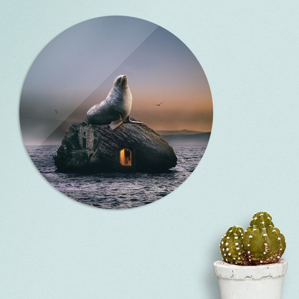 Discover «seal», Limited Edition Disk Print by Stefania Piredda - Giffyart - From 95€ - Curioos