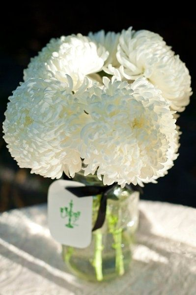 white mason jar centerpiece Flowers- white football mums. They are very full flowers and are cheap! Simply Couture Weddings LLC