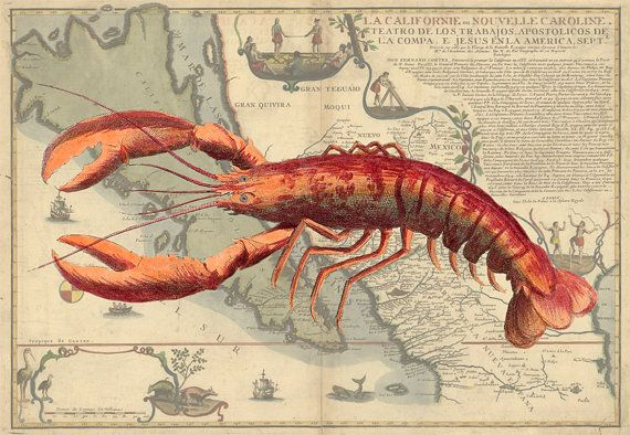 Large Lobster Wall Decor : Lobster print on nautical map art