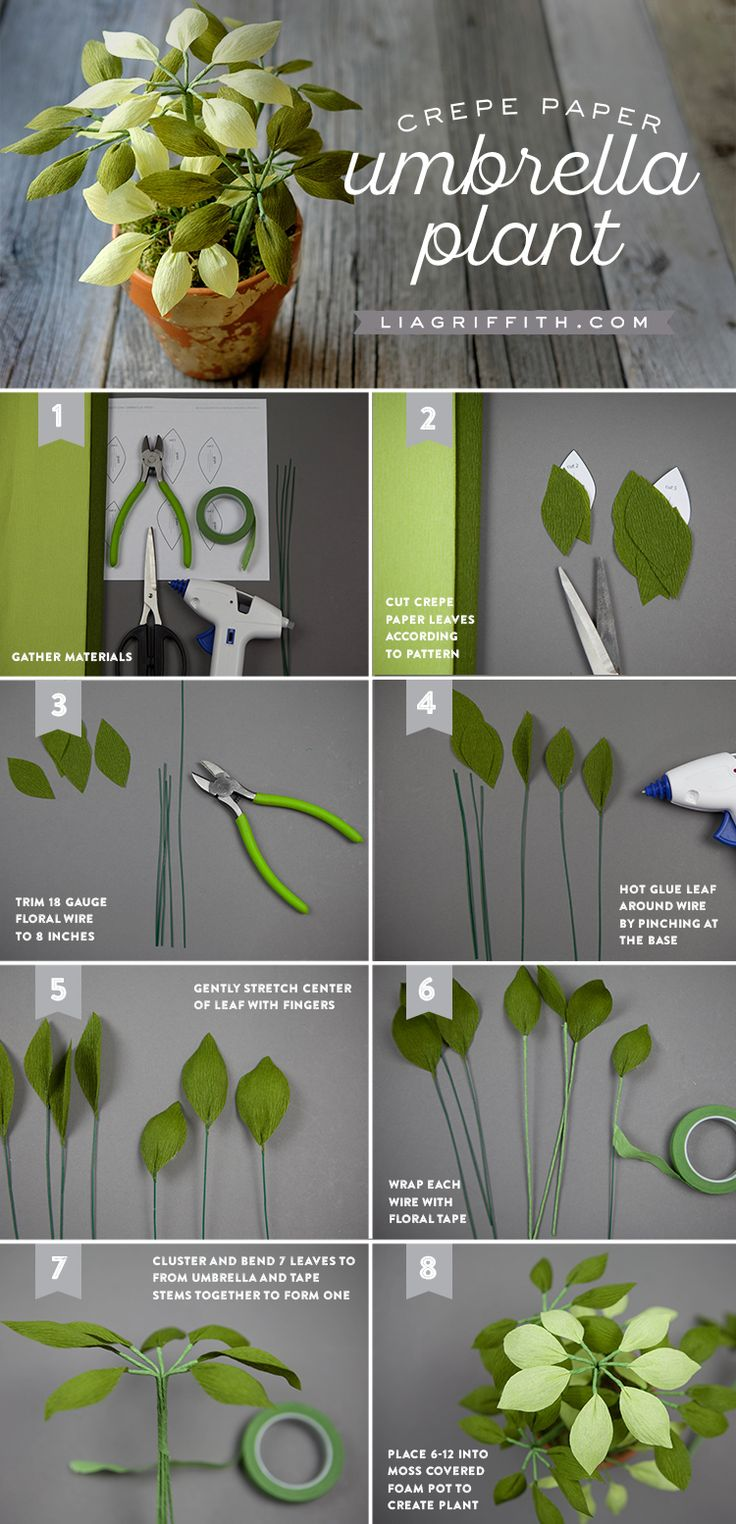 #crepepaperrevival #crepepaperplant #diyhouseplants #papercraft #paperart #phototutorial www.LiaGriffith.com:
