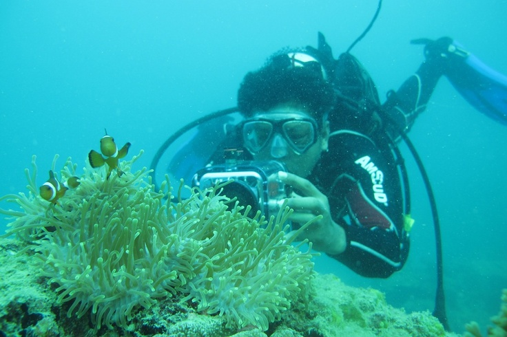 Snorkeling at Benan Island - Indonesia. http://www.batamtour.info