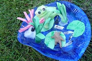 Frog Bulletin Board Ideas and Decorations