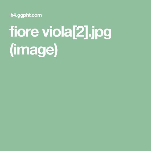 fiore viola[2].jpg (image)