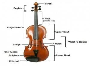 Fiddle Violin Coloring Pages And Facts Music Notes