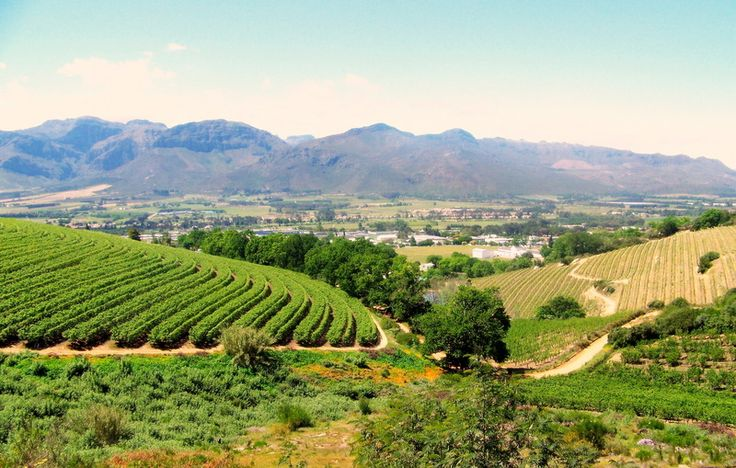 Cape Winelands - Boland, Western Cape South Africa