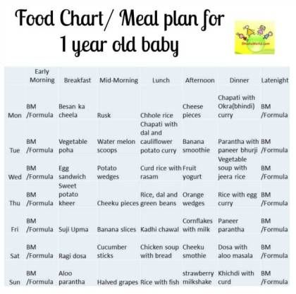 12 month Baby Food Chart/ Indian Meal Plan for 1 Year old baby