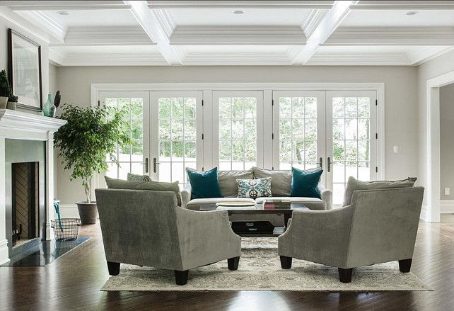 Living Room Ideas. Living Room Decor Ideas. Dubinett Architects, llc.