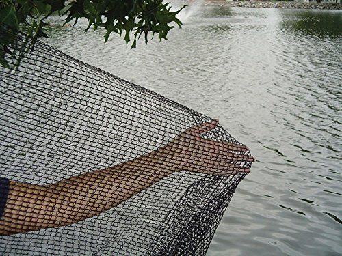 Best price on DeWitt Pond Netting, 10 by 12-Feet(2Pack)  See details here: http://bestgardenreport.com/product/dewitt-pond-netting-10-by-12-feet2pack/    Truly the best deal for the new DeWitt Pond Netting, 10 by 12-Feet(2Pack)! Look at at this low cost item, read customers' opinions on DeWitt Pond Netting, 10 by 12-Feet(2Pack), and get it online with no hesitation!  Check the price and Customers' Reviews: http://bestgardenreport.com/product/dewitt-pond-netting-10-by-12-feet2pack/  #home…