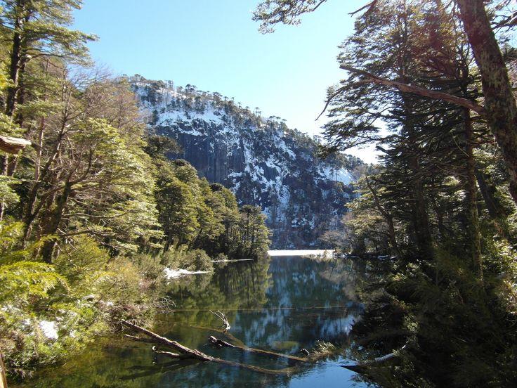 """Eco Hike """"San Sebastián of Huerquehue"""""""