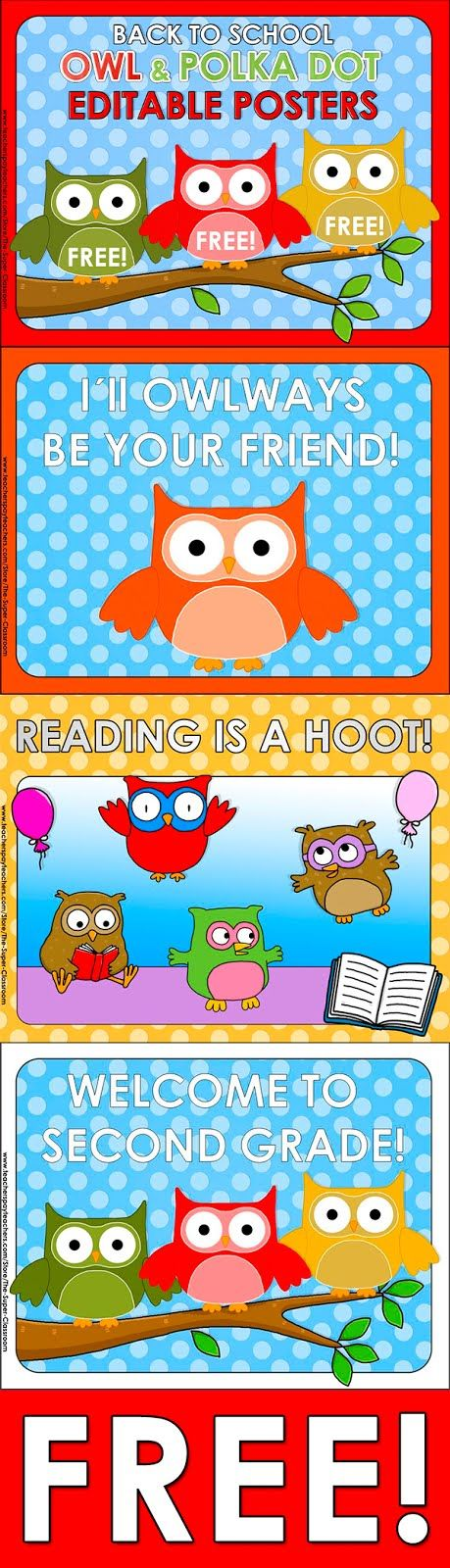Owl and Polka Dot FREE POSTERS!   Click hereto get 3 FREE posters for your  OWL & CHEVRON themed classroom!
