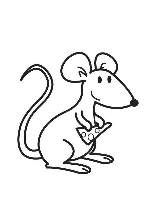 Kleurplaten met muizen » Muizen Pagina - De muis als huisdier
